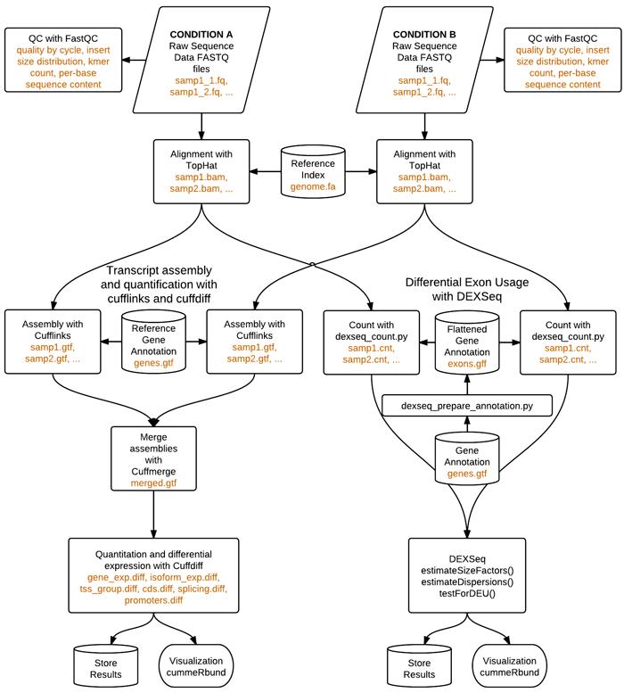 Diagram of workflow uva