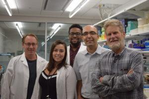 Laurie Lab Members