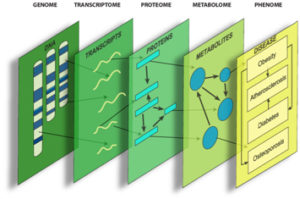 System Genetics Graphic