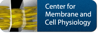 Center for Membrane and Cell Physiology Button