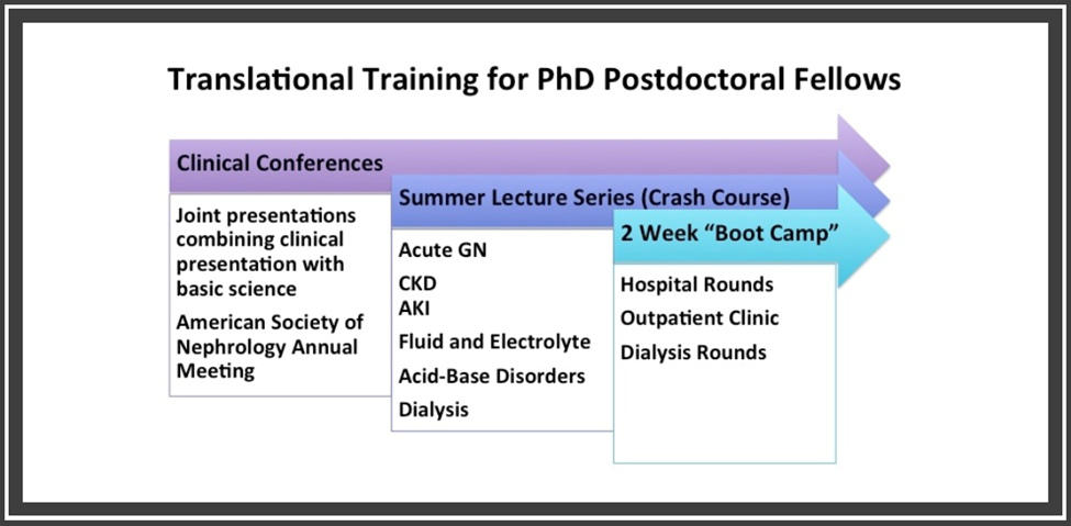Translational Training UVA