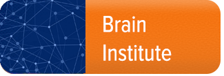 home-meun-buttons-brain-institute