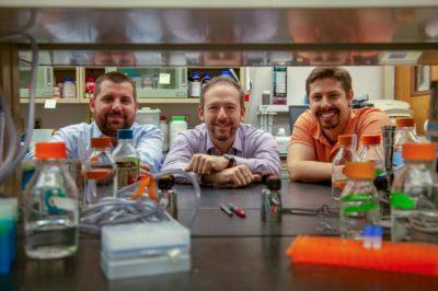 Kipnis Lab's Recent Publication
