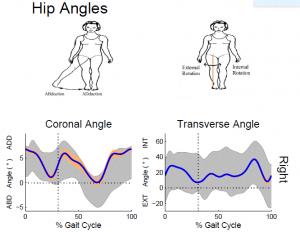 Hip Angles
