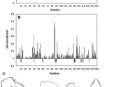Congratulations to Iga Kucharska, et al for their publication in Journal of Biomolecular NMR.