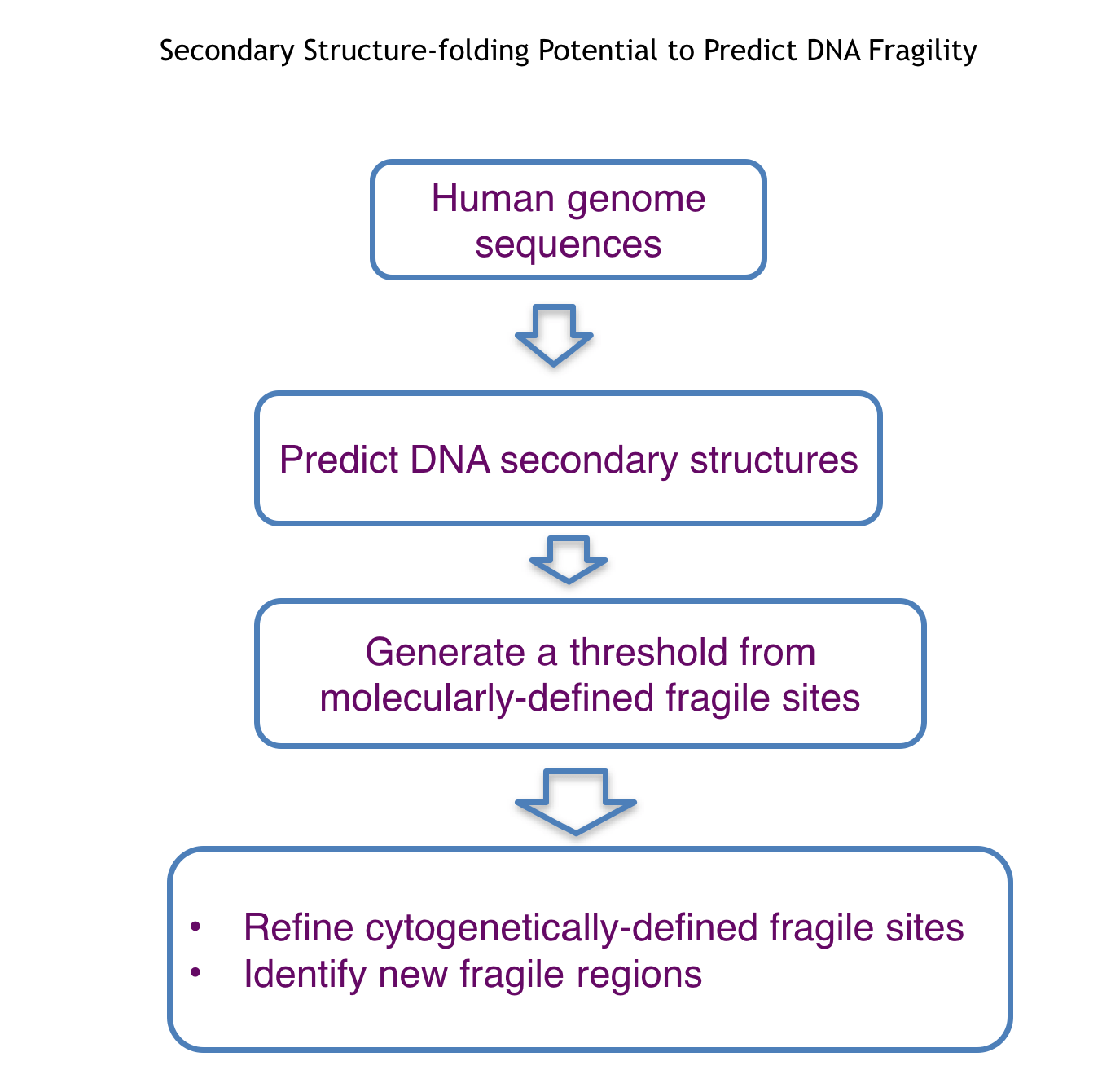 Flow chart depicting the process of using human genome sequences to predict DNA secondary structures that can then be used to generate a threshold from molecularly-defined fragile sites. This threshold can then be used to refine cytogenetically-defined fragile sites and to identify new fragile regions.s.